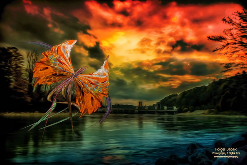 Digital Art - Phenix rises again