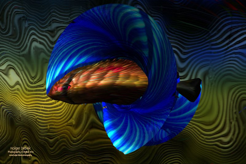 Digital Art - Fish3
