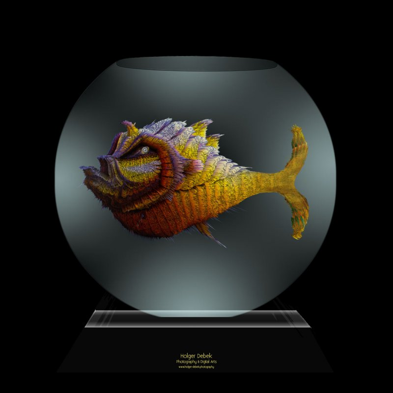 Digital Art - The fish