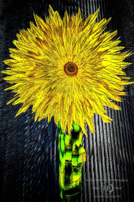 Digital Art - themotherofallsunflowers